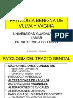 23 Patologiabenigna Malignavulvayvagina 101020105638 Phpapp01