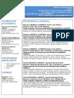 Curriculum Vitae  - copia.docx