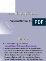 23 Biology 2_6_08 Nervous System 3 PNS.ppt