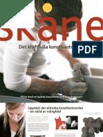 Skåne - Det kraftfulla konsthantverket
