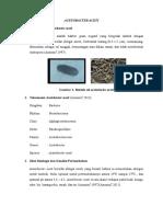 httpswww.academia.edu17239403Acetobacter_Acetiauto=download