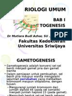 embrio-umum-1.ppt
