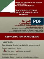 5. Valoracion de Sistemas 2 .ppt