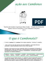 palestra_cambonos.pdf