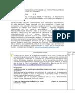 Webquest 1- II Trimestre