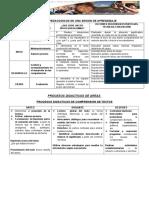 PROCESOS PEDAGOGICOS Y DIDACTICOS DE AREAS.docx