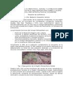 La región Metropolitana Kanata resumen CLAS.docx