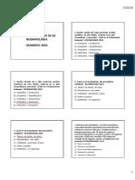 Macrodiscusion de Neonatologia Nº 03 Usamedic 2016 Actualizada