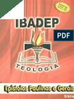 Epistolas Paulinas e Gerais IBADEP PDF