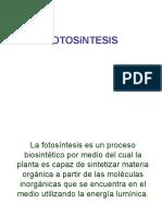 FOTOSINTESIS 2