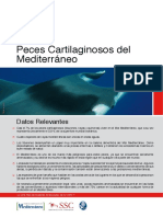 peces_cartilaginosos_del_mediterraneo amenazas.pdf