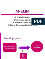 20091220_anemia_2009.ppt
