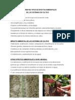 LOS DIFERENTES TIPOS DE EFECTOS AMBIENTALES.docx