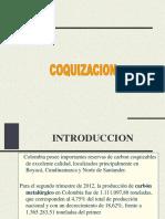 COQUIZACION2013