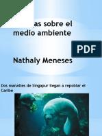 Noticias sobre el medio ambiente.pptx