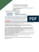 Sistemas de informacion gerencial - Laudon & Laudon -Resumen CAP 14 - TI