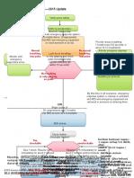 BLS Adult Cardiac Arrest Algorithm 2015 Update