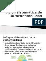 Visión sistemática de la sustentabilidad 7.pptx