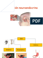 Estress y Regulacion Neuroendocrina