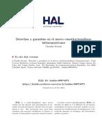 derechos y garantías.pdf