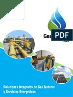 energy gas.pdf