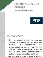 Programa de Vacunación en Rumiantes