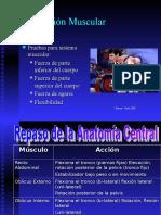 pruebas_musculares