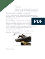 Hisotoria de Las Protesis