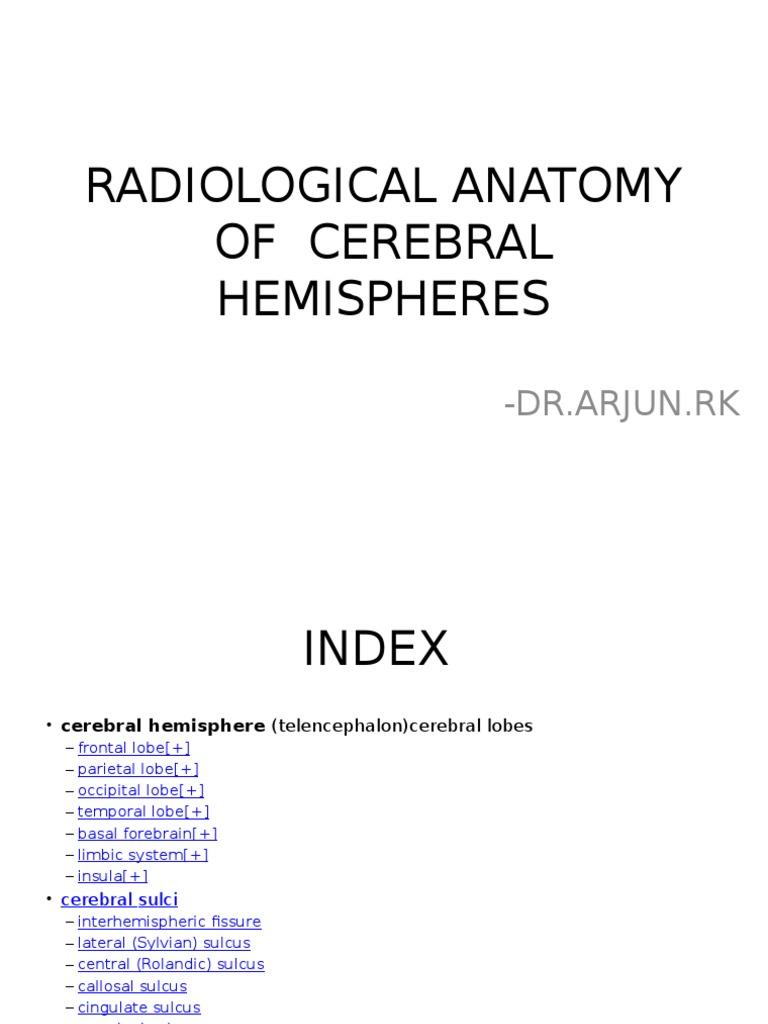 Radiological Anatomy Of Cerebral Hemispheres Cerebrum Parietal Lobe