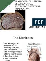 Radiology Meninges Ppt