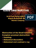 Ileus Obstructive