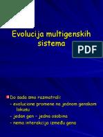 Evolucija Multigenskih Sistema