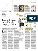 Los Problemas de Visión y La Carga Genética