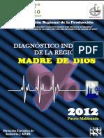 DIAGNÓSTICO INDUSTRIAL  2012 (1).pdf