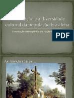 A forma├з├гo e a diversidade cultural da popula├з├гo - 2┬║ano (1)