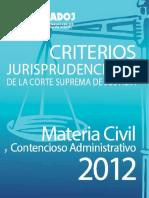 Civil Contencioso 2012.pdf