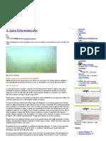 Água turva em aquários _ meuaquario.blog.pdf