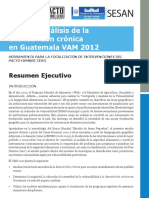 Mapeo de INSAN General resumen ejecutiva MAGA.pdf