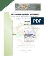 GENESIOLOGIA.docx