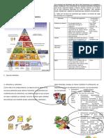 Guía Teórica de Alimentación