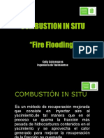 167752221-COMBUSTION-IN-SITU-ppt.ppt