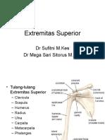 K1,2-Extremitas Superior & Inferior