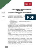 Resumen Pleno Mayo 2010