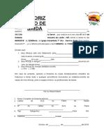 Autorizaçao de Saida Dbv