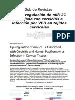 Up Regulation MiRN21sinocultas