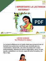Lactancia_materna.pdf
