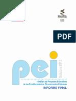 Estudio_PEI_ Informe_Final.pdf