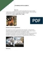 Clasificación de Los Animales Por Su Alimento
