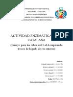 Actividad enzimatica de la catalaza
