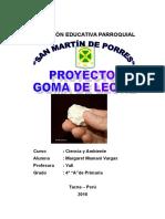 PROYECTO - GOMA DE LECHE.doc